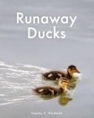Runaway Ducks
